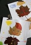 Осенние поделки: аппликации из осенних листьев. Коллаж из осенних листьев