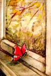 Сергей Крестьянкин:  ослик,  пушистый дракон и благодарная бабочка