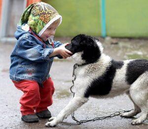 1193185865 8 300x261 - Ребёнок жестоко обращается с домашними животными. Что делать?