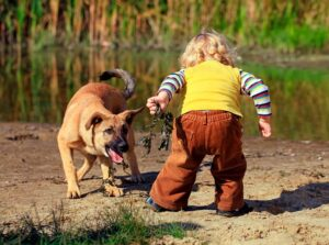 30 05 2019 01 300x223 - Ребёнок жестоко обращается с домашними животными. Что делать?
