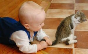 image031 1 300x186 - Ребёнок жестоко обращается с домашними животными. Что делать?