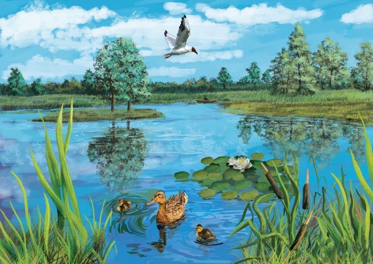 Картинки на тему болото