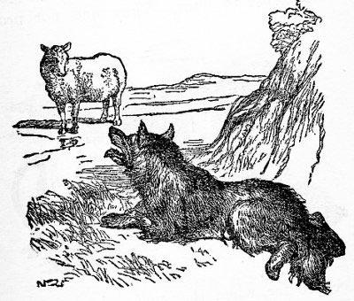 картинки как нарисовать волка и ягненка жена спрашивает меня