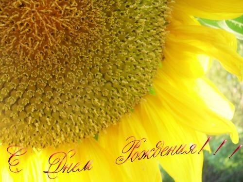 pravoslavnoe-pozdravleniya-s-dnem-rozhdeniya-kartinki foto 16