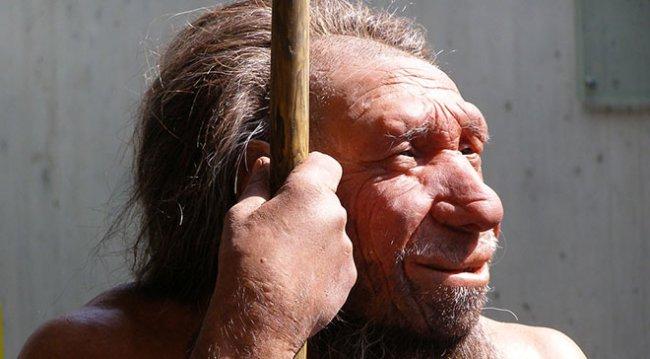 neanderthal_660px.jpg