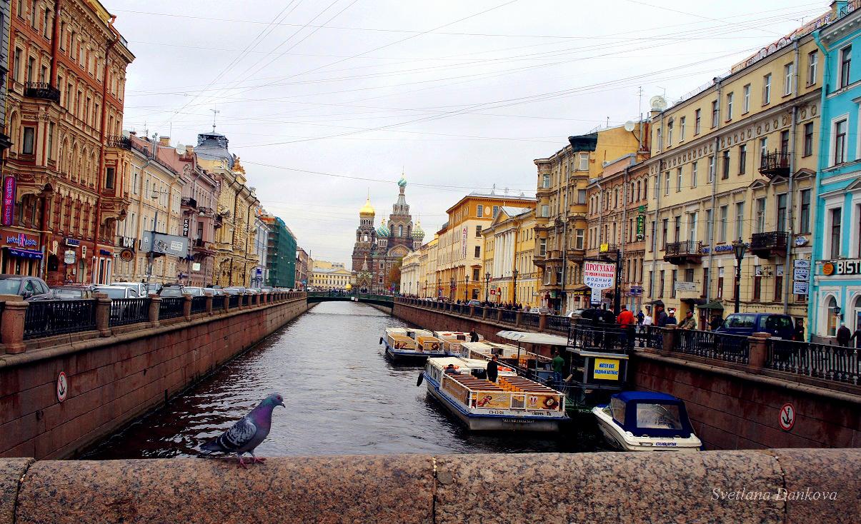 знакомства kenny санкт петербург forum