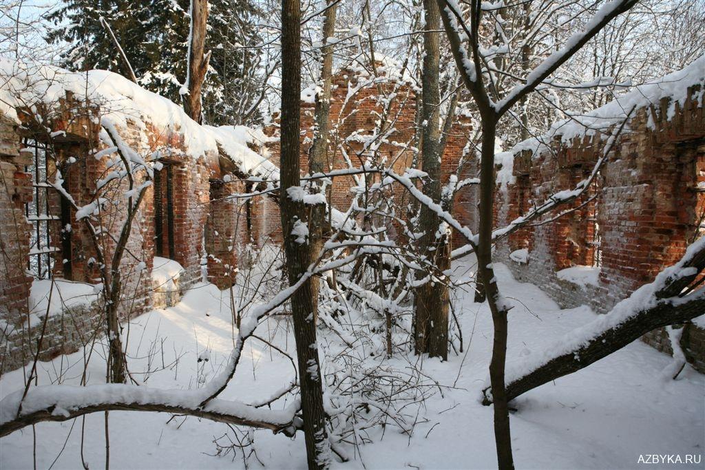 Руины Покровской церкви в селе Замостье под Петербургом...
