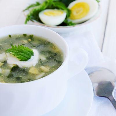 «Зеленый» суп с крапивой
