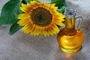 sunflower oil and a sunflower flower on the table natural vegetable oil - Жареный корень лопуха