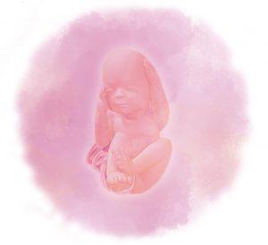 27 e1583237510961 300x274 - Двадцать седьмая неделя беременности