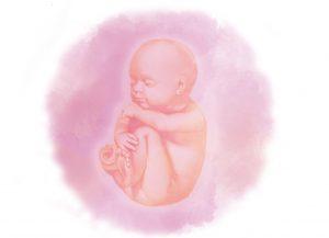 38 e1580853627792 - Тридцать восьмая неделя беременности