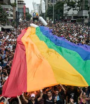 Двенадцать мифов гомосексуальной пропаганды