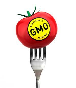 Осторожно: ГМО!