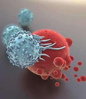 Как противостоять росту онкологических заболеваний?
