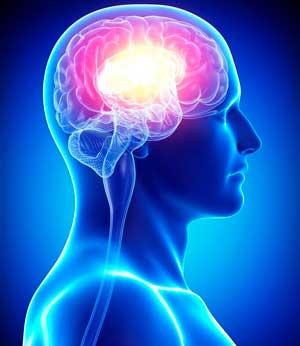 Нейробика – зарядка длямозга