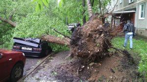 image001 300x169 - Что делать, если оказался на улице во время урагана?
