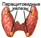image002 - Эндокринные гипертензии: причиной повышенного давления могут быть гормоны